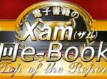 第13回e-book大賞の投票が始まりました