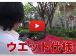 【動画】ビジネスで成功するためのノウハウ動画をすべてプレゼント中!
